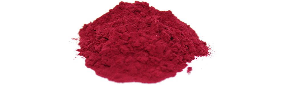Powder of dried fruit juice